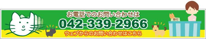 042-339-2966